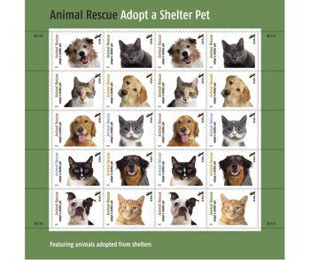 Buy Pets Online